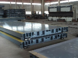 100 tấn KINGBIRD - METTLER TOLEDO-USA